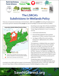Wetlands Policy Factsheet